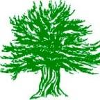 Yewstock logo